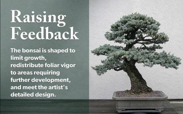 Raising Feedback